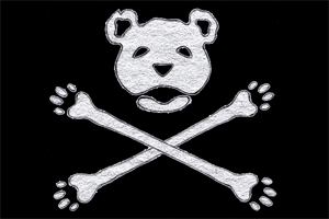 the good ship bear bones preview
