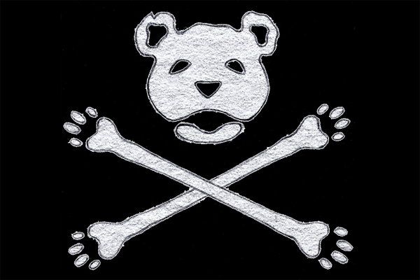 bear bones recording