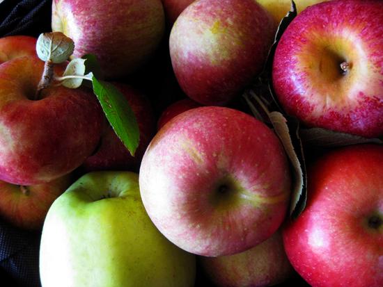 apples are nice nice
