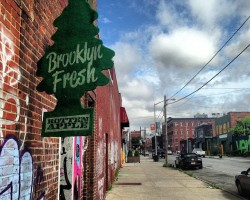 brooklyn_fresh